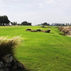 Doha Golf Club 1